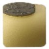 Diamond Grinding Plates - Single Segment - Medium Floor 25# - Gold