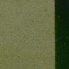 Ameripolish SureLock Concrete Dye - Surelock Dye Green